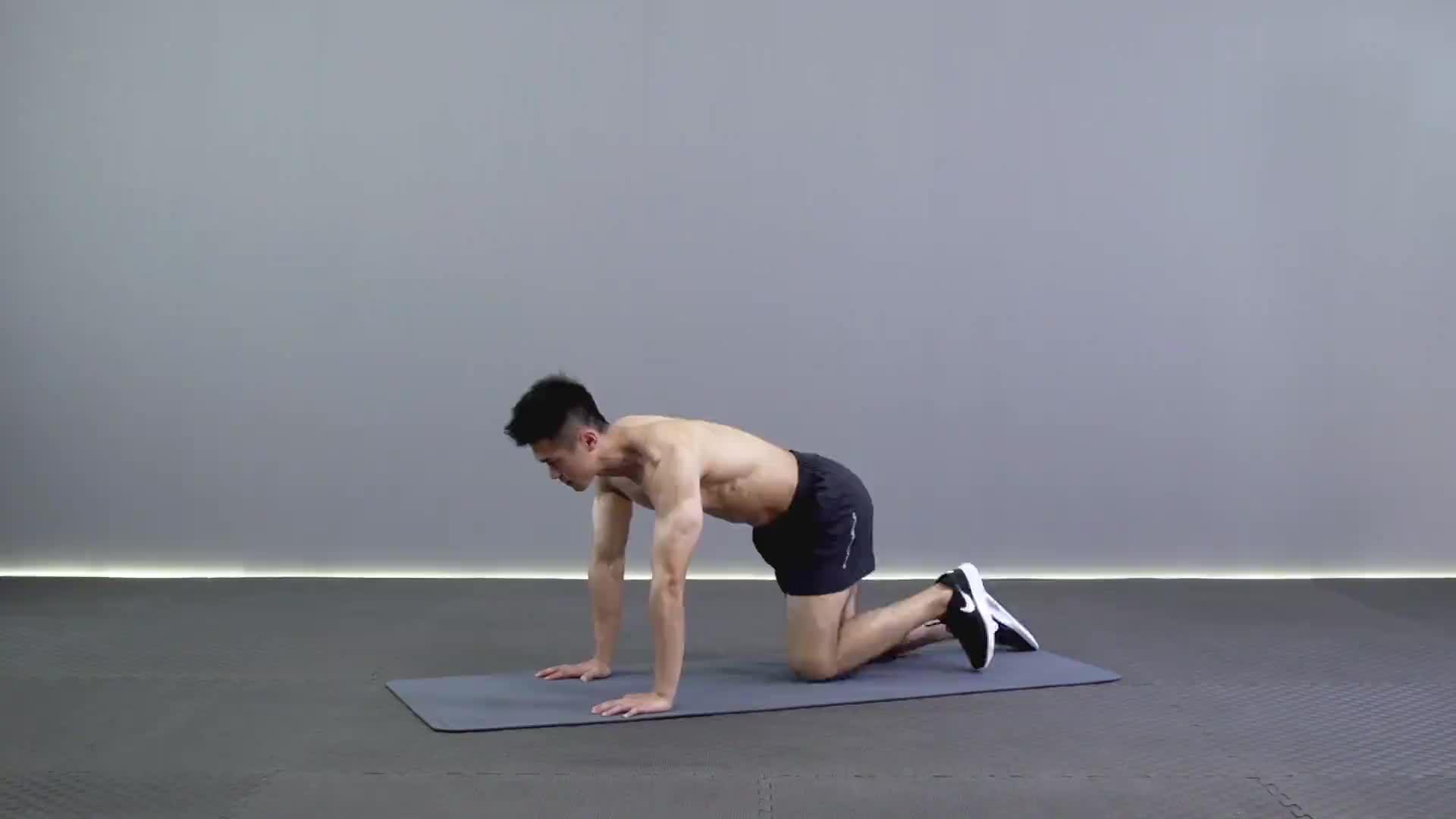 动作要领图                 1、手臂自然伸直垂直于地面2、保持动作速率平稳         1、收紧腹部2、腿部自然伸直与地面平行           主要肌肉示意图        跪姿侧抬腿