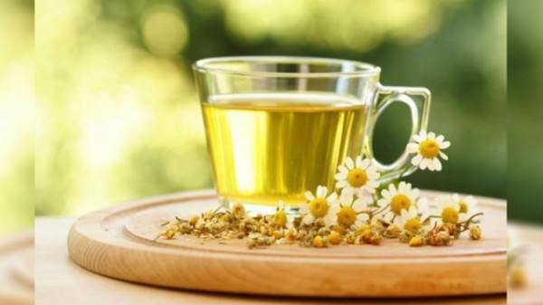 薄荷茶的饮用季节