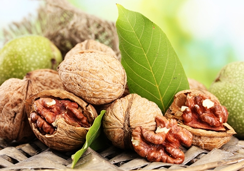 核桃的营养价值有多高较多的坚果摄入,与记忆力、认知灵活性、信息处理速度,以及整体的认知功能改善有关。一项为期3年的研究表明,每天吃初榨橄榄油+30克坚果(15克核桃、7.5克扁