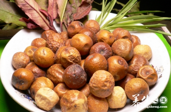 川楝子川楝子又名金铃子、川楝实,中药材,为楝科落叶乔木川楝树的成熟果实。主要产于中国的南方各地,以四川的产者最为上乘,故又名川楝子。川楝子性寒,味苦,是行气药的一种。主要
