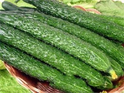 夏天来了,想大口吃西瓜又怕肚子着凉拉稀,怎么办?用什么水果替代?当然有办法!吃黄瓜。推荐原因,不仅是因为黄瓜和西瓜通出一属,且黄瓜几乎继承了西瓜所有的好处。它含水量为各类